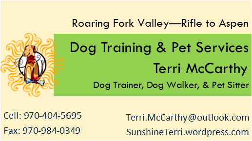 Dog Training & Pet Services